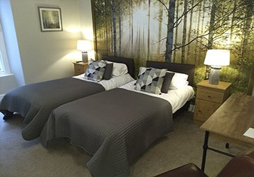 Twin single or super king size bed, ensuite room, B&B accommodation in Beddgelert, Snowdonia, North Wales